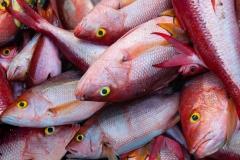 Oistins Fish Market, Barbados